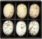 Suvenyras kiaušinis ornamentuotas keramikinis H 8 cm(6) 79848