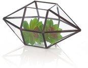 Terariumas geometrinis augalams HR04021 14*27cm SAVEX