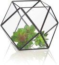 Terariumas geometrinis augalams HR04022 dia 18 cm SAVEX