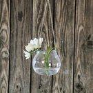 Vazelė stiklinė (6) YQO5111-1 6.8x7.8 cm SAVEX