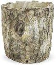 Vazonėlis betoninis medžio imitacija 15x14,5x14,5 cm 119668 ddm