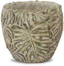 Vazonėlis Palmės lapai betoninis 12,5x12,5x12,5 cm 116415