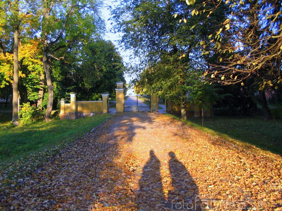 Baisogala autumn nurses.jpg