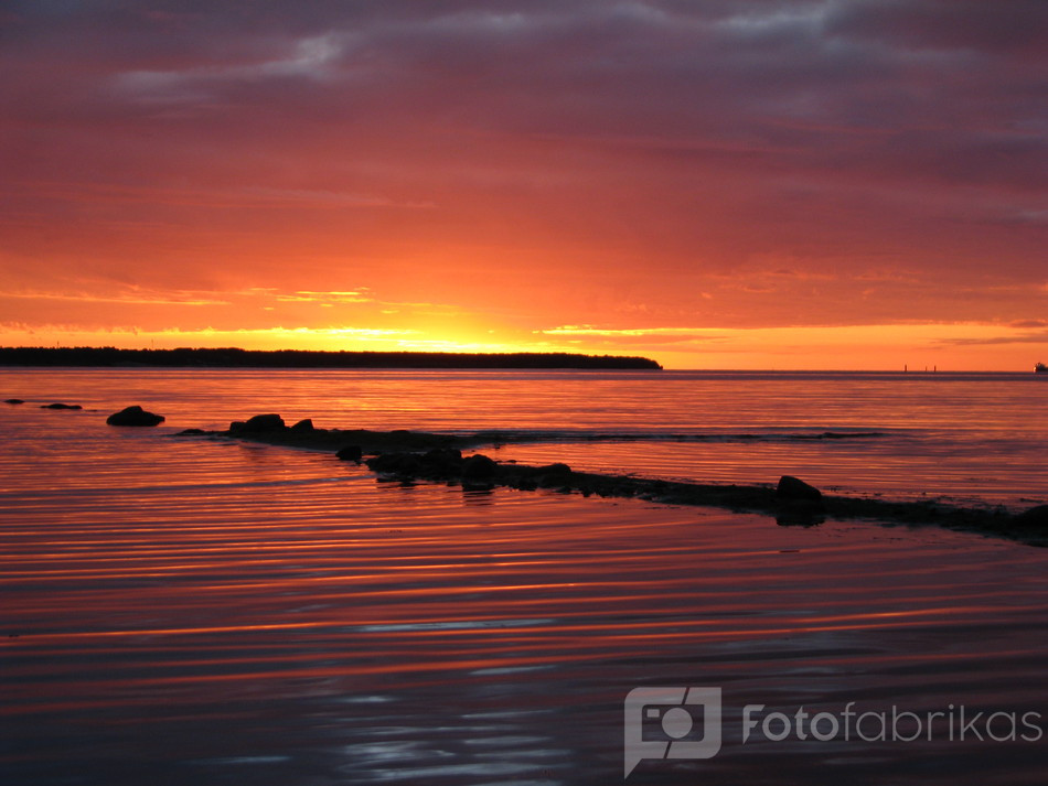 saulėlydis Taline