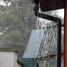 lietus.JPG