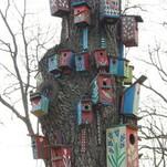 Išskridę paukščiai į namus sugrįš pavasarį saulėtą...