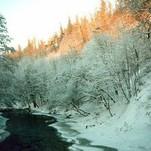 Žiemos peizažas