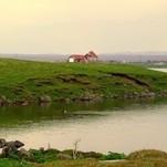 Islandijos kaime